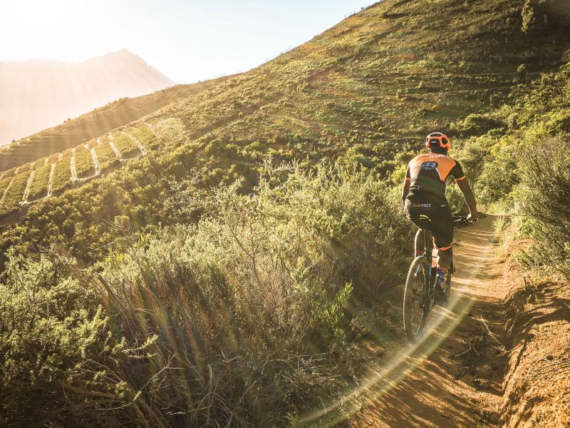 Cape MTB Trails